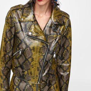 Zara snakeskin print biker jacket
